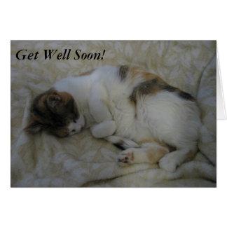 El gato el dormir consigue pronto la tarjeta bien