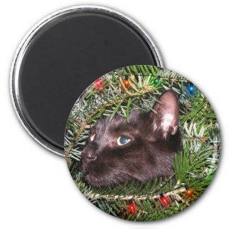 El gato en el árbol de navidad - imán