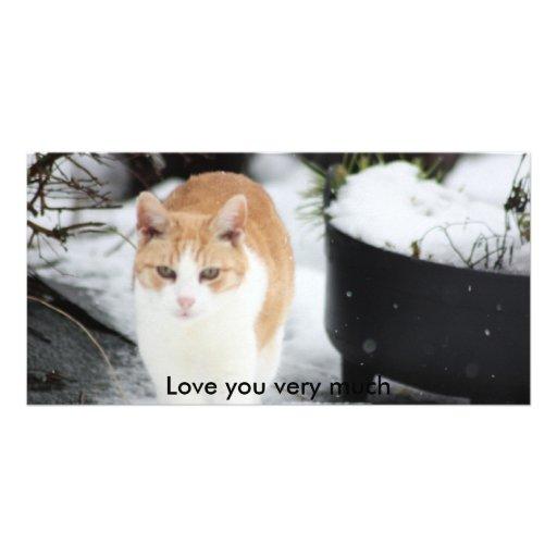 El gato en jardín nevoso, le ama mucho tarjetas personales con fotos