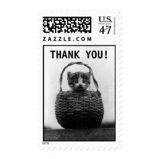 El gato en la foto el | del vintage de la cesta le estampillas