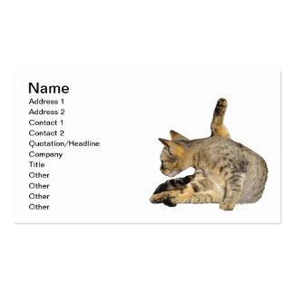 """El gato en """"me da 5"""" actitud tarjetas de visita"""