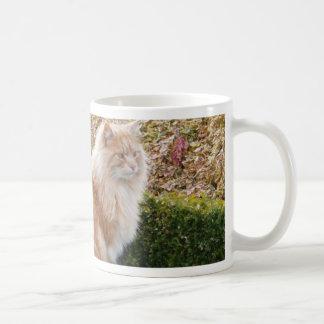 El gato en Wimpole Pasillo Cambs Tazas De Café