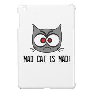 ¡El gato enojado está enojado!