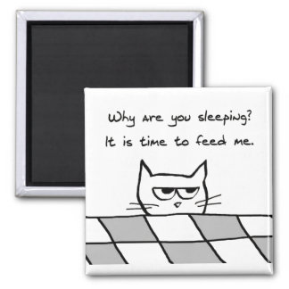 El gato enojado le quiere fuera de cama imán cuadrado