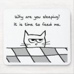El gato enojado le quiere fuera de cama tapete de raton