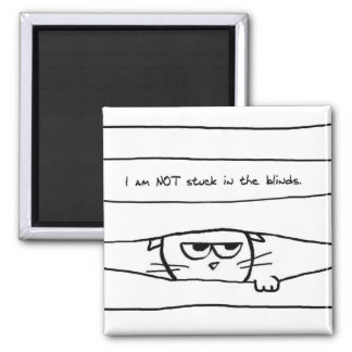 El gato enojado no se pega en las persianas imán cuadrado