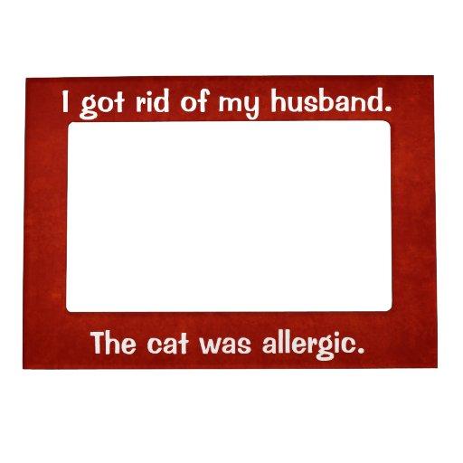 El gato era marco magnético alérgico marcos magneticos