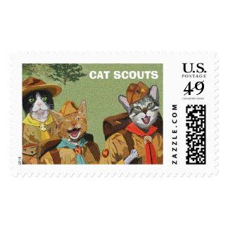 El gato explora los sellos de los E.E.U.U.