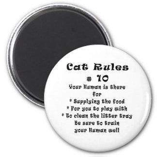 El gato gobierna el número 10 imanes