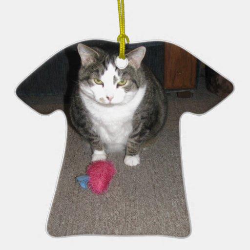 El gato gordo gruñón no se divierte adorno para reyes