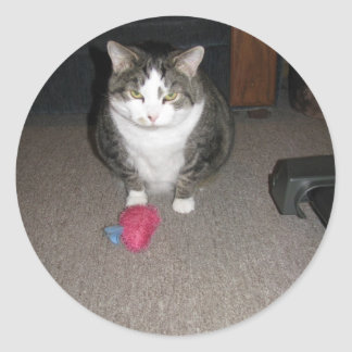 El gato gordo gruñón no se divierte pegatina redonda