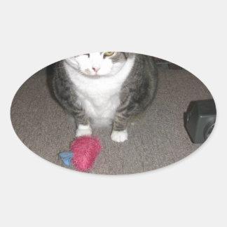 El gato gordo gruñón no se divierte pegatina ovalada