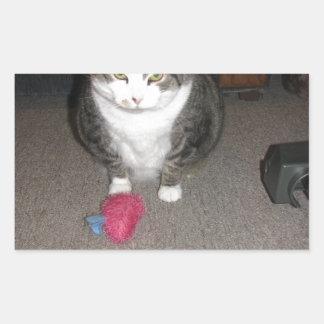 El gato gordo gruñón no se divierte pegatina rectangular