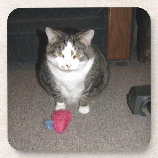 El gato gordo gruñón no se divierte posavasos