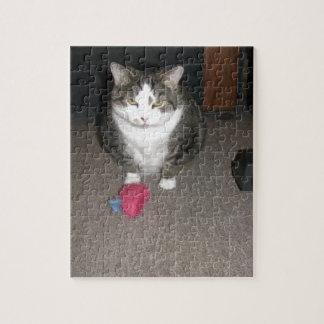 El gato gordo gruñón no se divierte rompecabezas con fotos