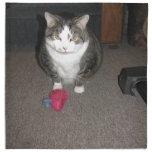 El gato gordo gruñón no se divierte servilletas