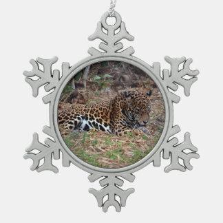 el gato grande del jaguar que lame las patas refre adorno