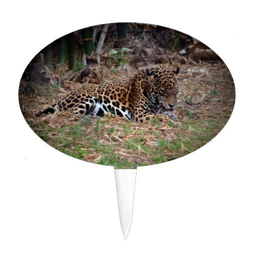 el gato grande del jaguar que lame las patas refre figuras para tartas