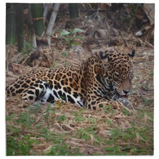 el gato grande del jaguar que lame las patas refre servilleta