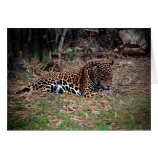 el gato grande del jaguar que lame las patas refre felicitación