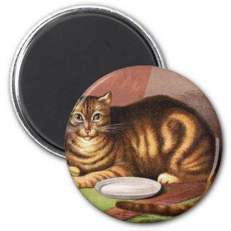 El gato hambriento espera las ilustraciones de la  imán redondo 5 cm