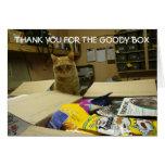El gato le agradece tarjeta de nota