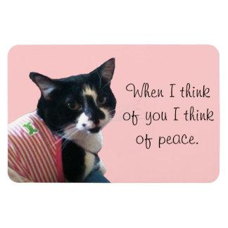 El gato lindo del smoking piensa en los imanes de