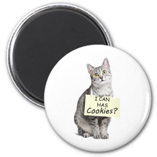 ¿El gato lindo me pregunta puede tiene galletas Imán De Nevera