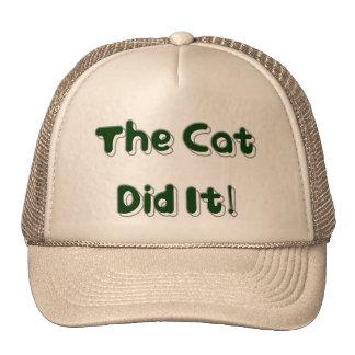 ¡El gato lo hizo Gorra