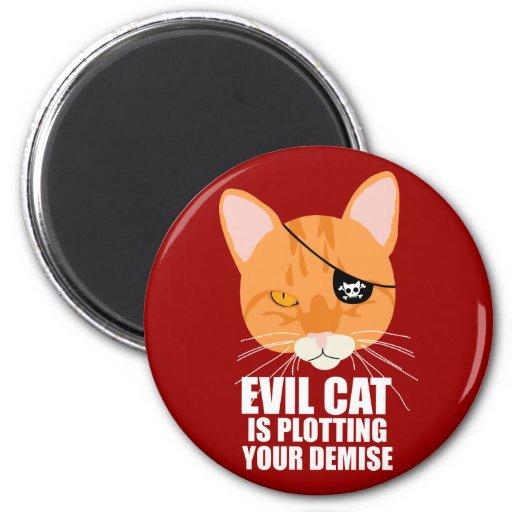 El gato malvado está trazando su fallecimiento iman