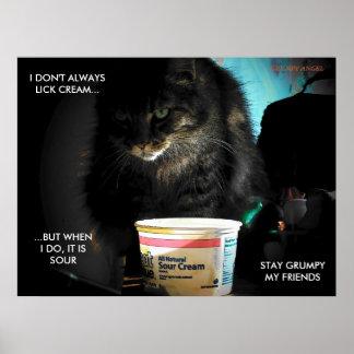 El gato más interesante del mundo posters