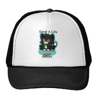El gato negro adopta gorro