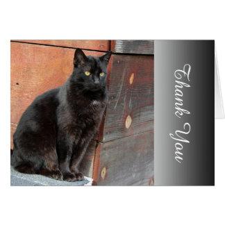 El gato negro agradecido le agradece tarjeta de