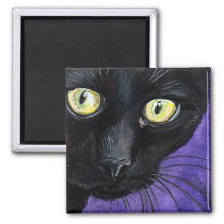 El gato negro con amarillo observa el ejemplo imán cuadrado