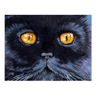 El gato negro con amarillo observa la postal del a