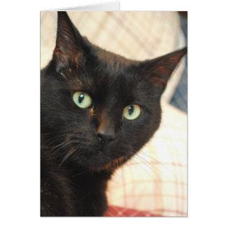 El gato negro le agradece cardar tarjeta de felicitación