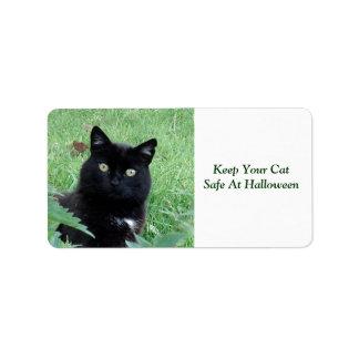 El gato negro mantiene su gato seguro en la etiqueta de dirección