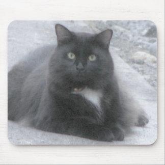 el gato negro [watercolour] mouse pad