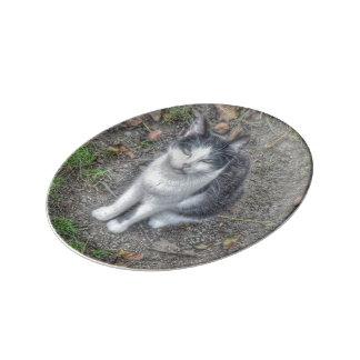 el gato plato de cerámica