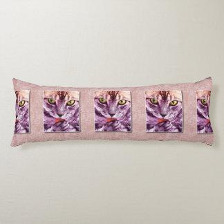El gato púrpura del gatito tiene una foto del cojin cama
