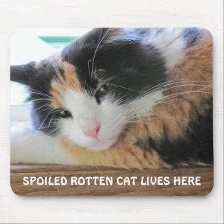 El gato putrefacto estropeado vive aquí alfombrilla de ratón