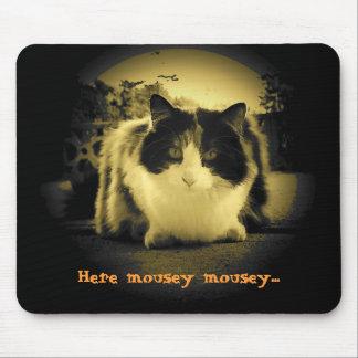 El gato quisiera que los ratones salieran y el alfombrilla de raton