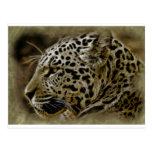 El gato salvaje de Jaguar mancha destino africano  Postal