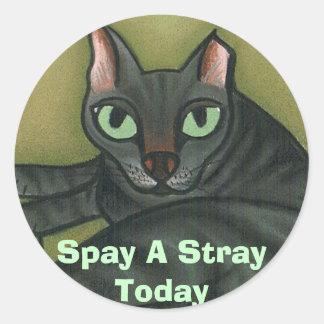 El gato salvaje, Spay un parásito hoy - modificado Pegatinas Redondas