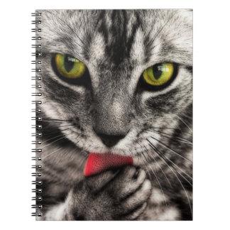 El gato se lame libro de apuntes con espiral
