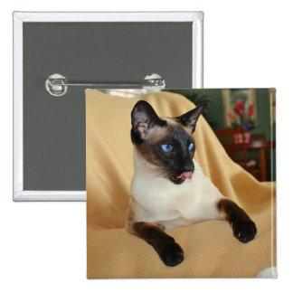 El gato siamés del punto cómico del sello que lo pin cuadrado