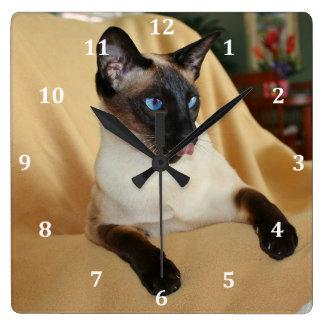 El gato siamés del punto cómico del sello que lo reloj cuadrado
