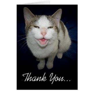 El gato sonriente le agradece cardar tarjeta de felicitación