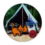 El gato va a acampar