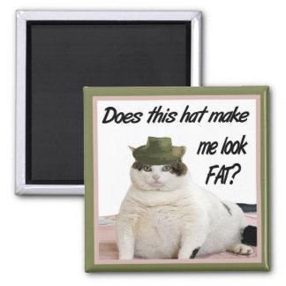 El gato y el imán del gorra